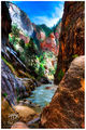 Canyon Light print