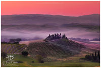 italy, tuscany, tuscan, wine, olive, grape, belvedere, idyllic, dawn, fog, montalcino, landscape, beauty, timeless, cultivating, perfect