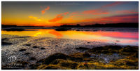 dawn, backshore, island, Cape Porpoise, Maine