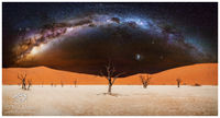 Deadvlei, Milky, Way, Acacia, Salt, sand, dunes, terrified, chetah, coyotes, long exposures, panoramics, stars, starlight, radiant, radiance, sky