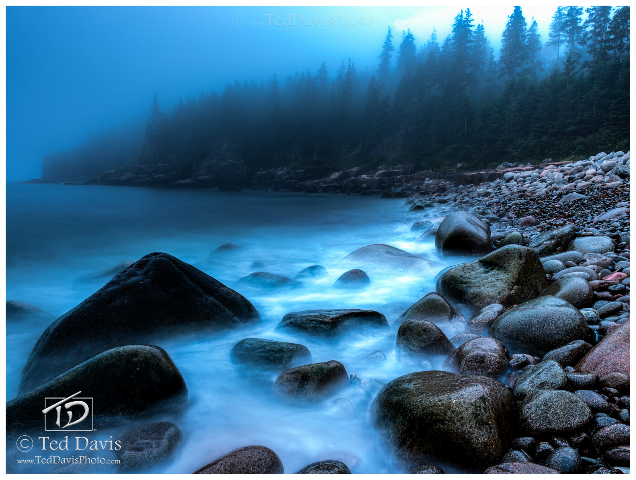 Sea, Fog, Forest, Rocks, Mist, Maine, New England, photo