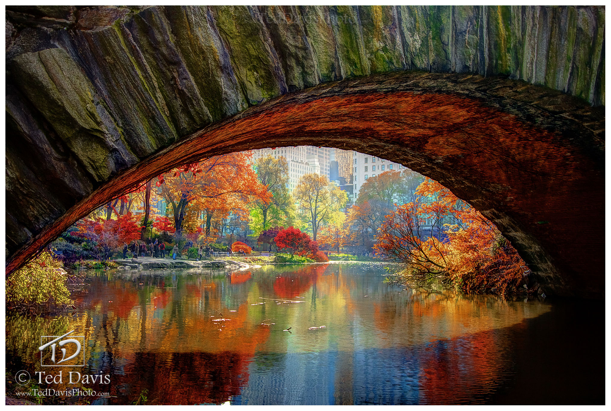 central park, Manhattan, new york, color, fall, bridge