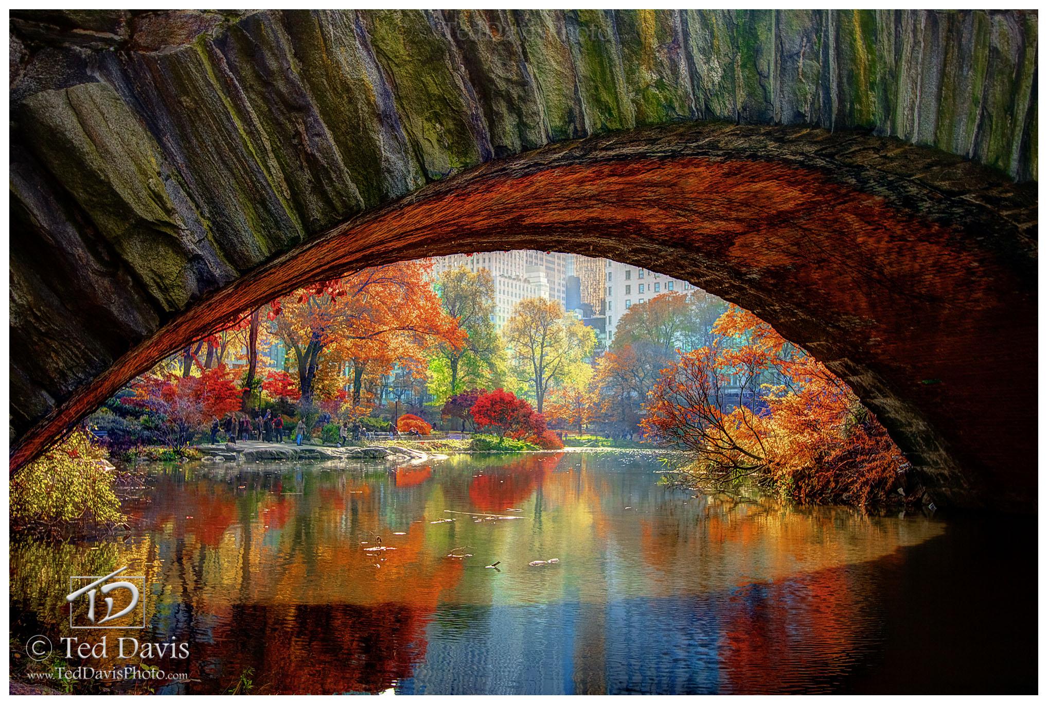 central park, Manhattan, new york, color, fall, bridge