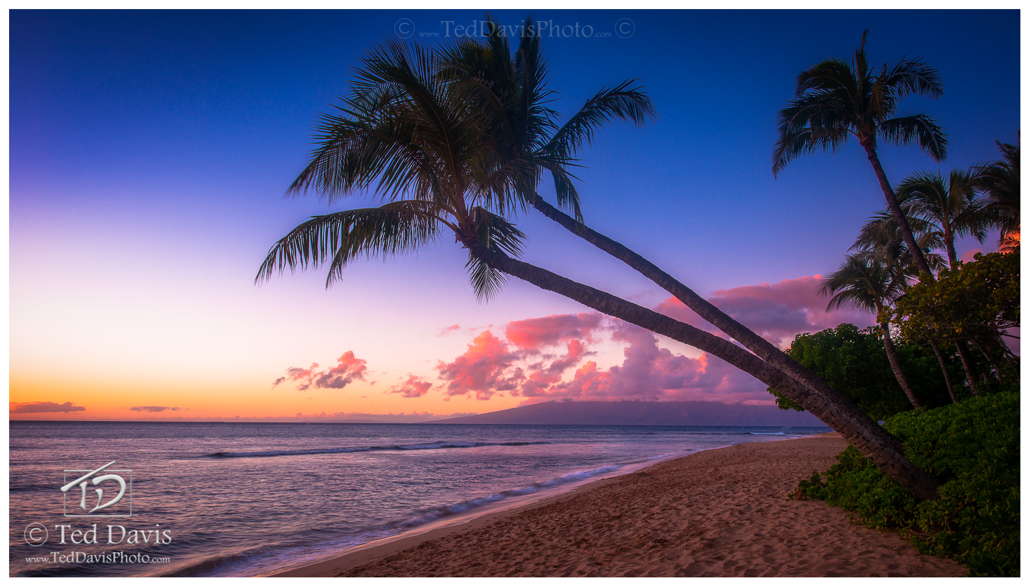 sun, setting, coast, Maui, Hawaii, evening, palms, sunset, shoreline, calmness, glow, clouds, ocean, photo